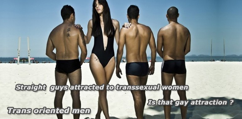 Men who like to date transsexuals are gay ?